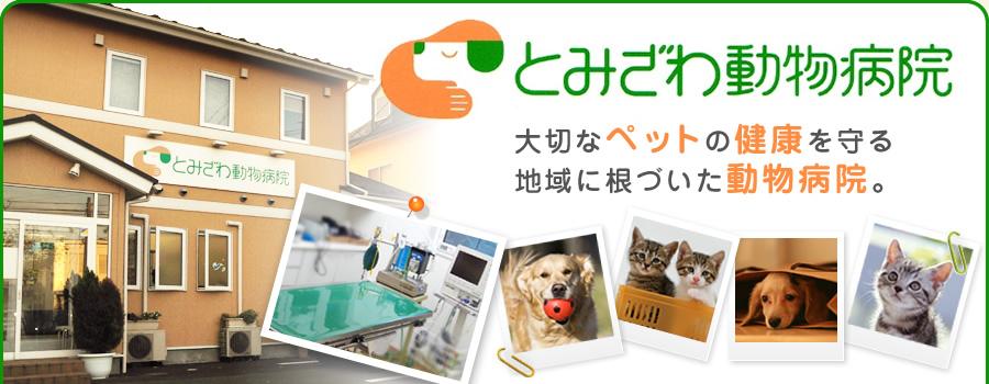 とみざわ動物病院 大切なペットの健康を守る地域に根づいた動物病院。